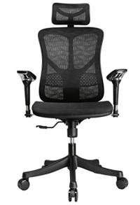 Ergonomic Gift Idea- Argomax Mesh Office Chair