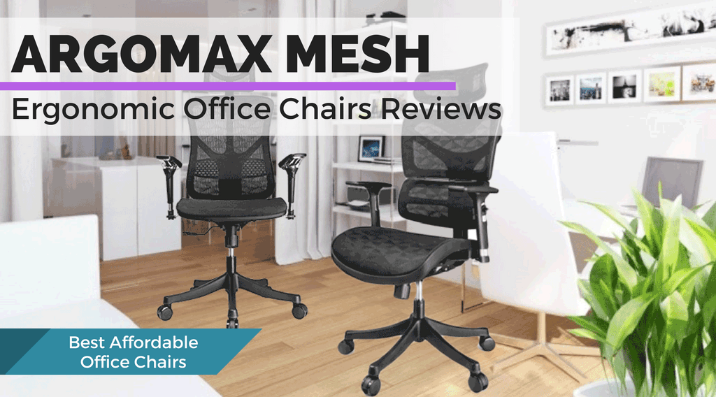Argomax EM-EC001 and EM-EC002 Office Chairs Review and Comparison