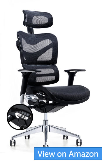 Poly and Bark Inverness Ergonomic Office Chair Review