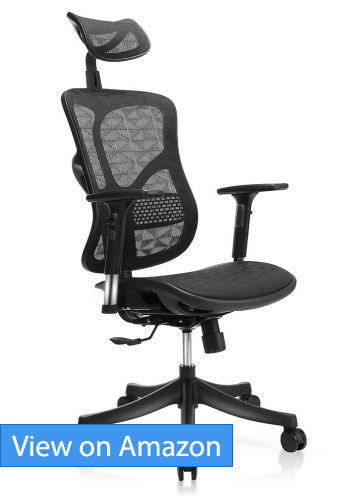 TomCare Ergonomic Mesh Office Chair Review