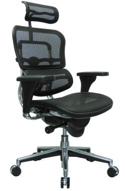 ErgoHuman Mesh Office Chair for Back Pain Review