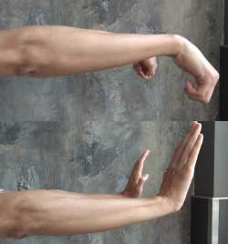 Hand Exercises- Wrist Flexion and Extensions II