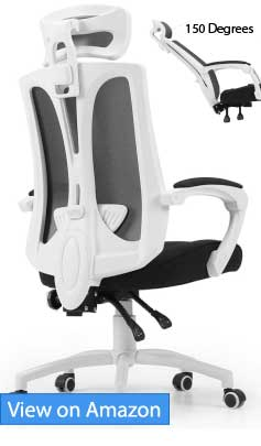 Hbada Ergonomic Office Chair Review