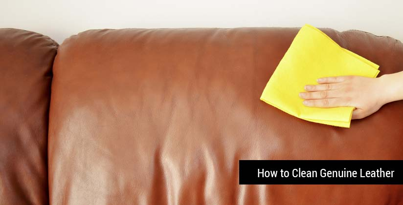 How to Clean and Take Care of Genuine Leather