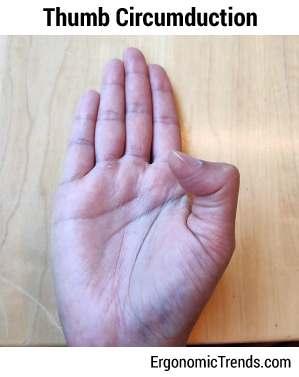 Thumb Circumduction Exercise