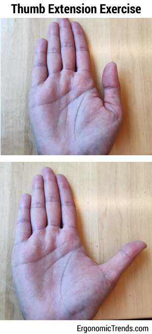 Thumb Extension Exercise