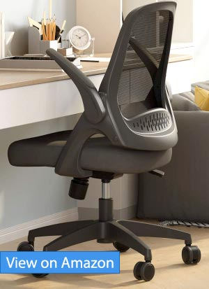 Best Computer Task Mesh Chair Review
