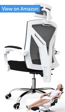 Hbada Reclining Office Chair Review