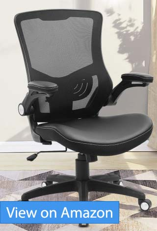 Xishe Task Office Chair Review