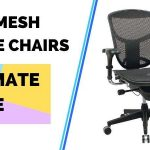 Best Ergonomic Mesh Office Chairs in 2020 (The Ultimate Guide)