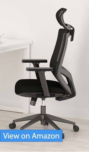Tribesigns Ergonomic Office Chair review
