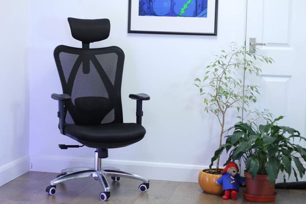 Sihoo M18 Office Chair Overview