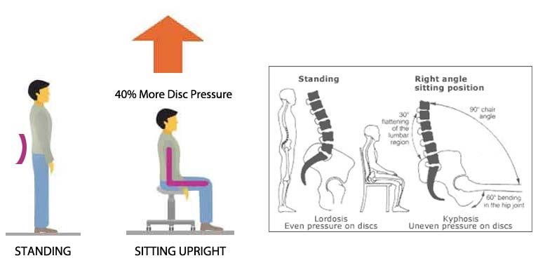 Standing vs Regular Upright Sitting: Stress on the Spine