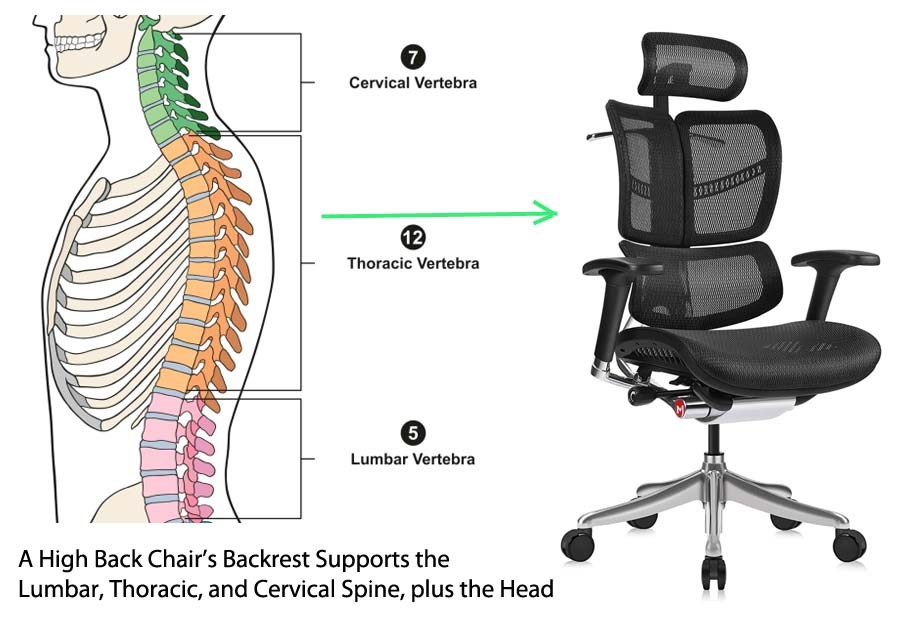 High Back Office Chair Spinal support